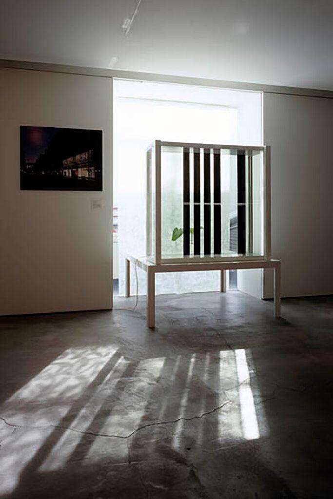 Yuko Nagayama 「Light and shadow」 / Works写真9