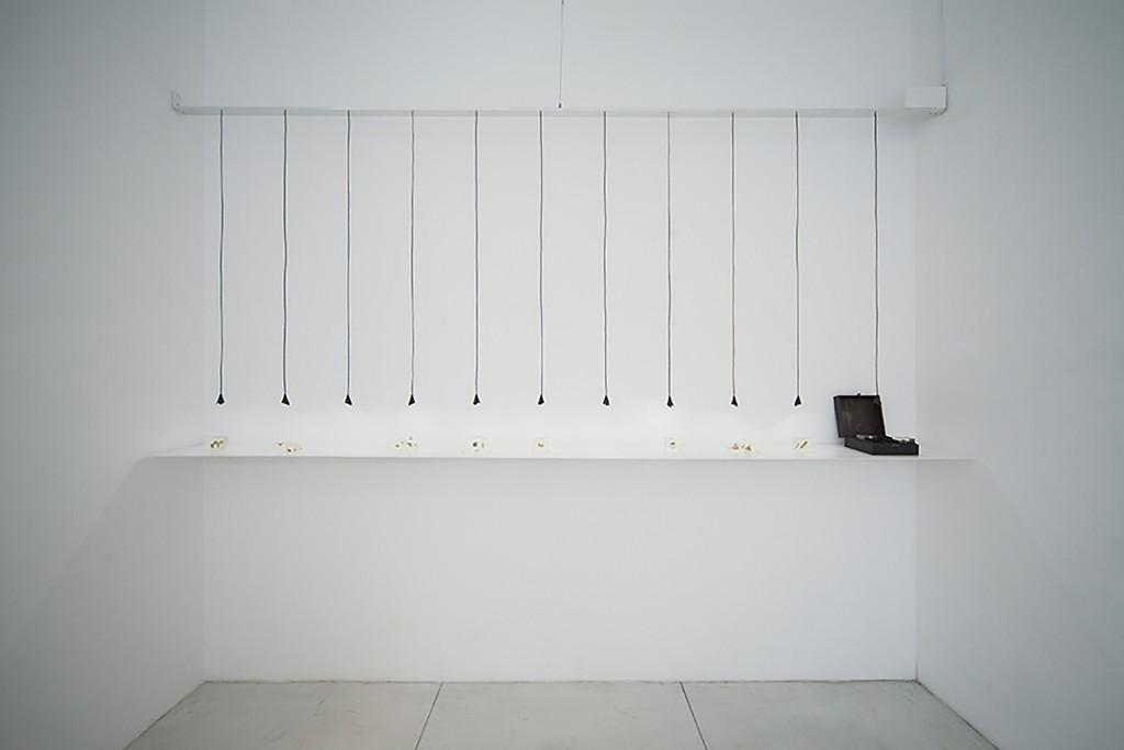DEROLL Commissions Series 1:箱 宝物標本箱 / Works写真1
