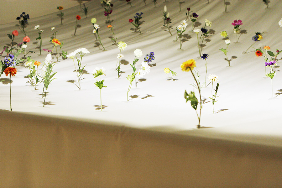 "Exhibition ""Yuko Nagayama""-place that does not reach / Works写真3"